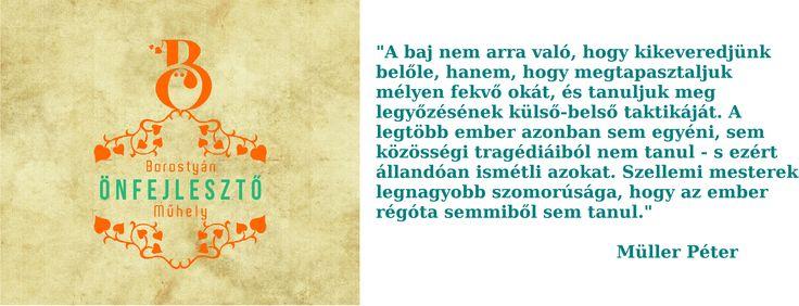 #borostyan #önfejlesztés