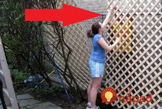 """Škaredý plot na záhrade a nedostatok financií, alebo nebodaj sused, s ktorým sa na výmene plota nedá dohodnúť? Ak aj vy na záhrade riešite problém /škaredého plotu"""", ktorý hádže nepekný tieň na celú vašu záhradu,"""