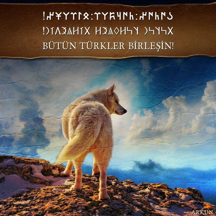 All Turks Unite! turan turanism turanic turancılık bozkurt turkistan turkic hungarian gokturk szekely tamga orkhon runic