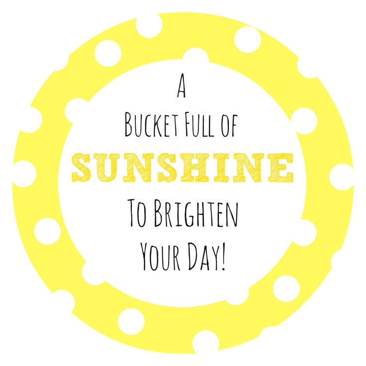 Bucket Full of Sunshine Gift Idea - Crazy Little Projects