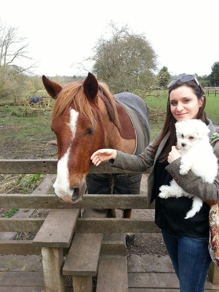 Precious loves all animals, even big horses.