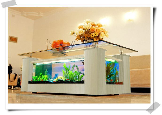 Fish tank table on pinterest fish tank coffee table fish tank bed