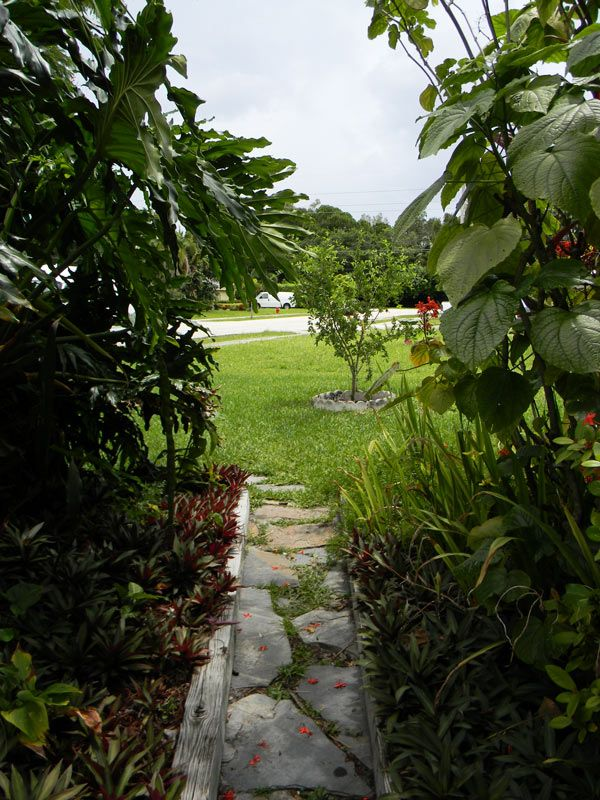 17 best images about garden paths and borders on pinterest for Survival garden