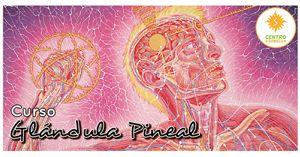 Curso Activación de la Glándula Pineal