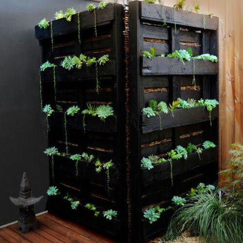 Pallets as herb garden, at the same time they hide the garbage bins.