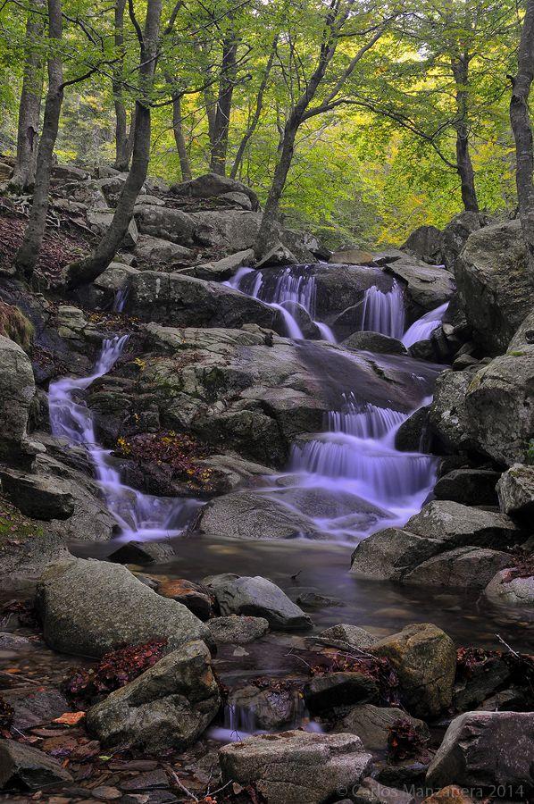 Font de Passavets, Parc Natural del Montseny. La Selva, Osona, Vallés Oriental.  Catalonia