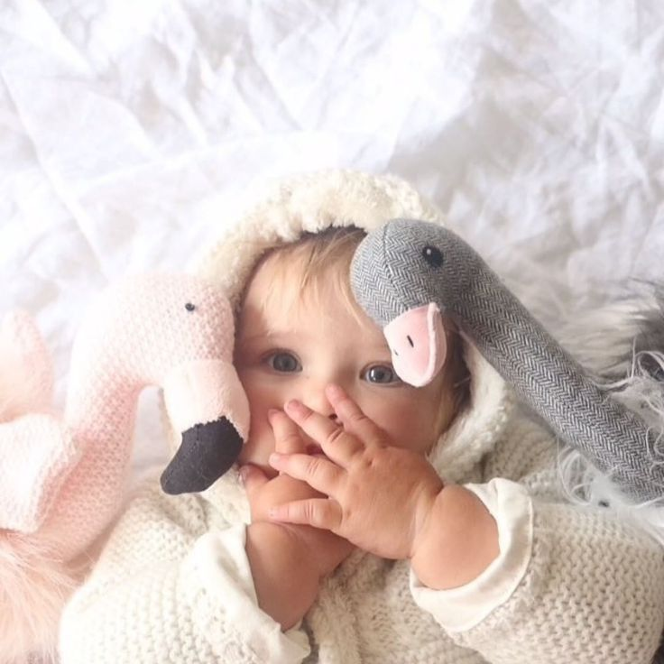 We've got your daily dose of cuteness courtesy of @natalie_gascoigne #regram  Peggy the Flamingo and Ollie the Ostrich really do make the best childhood besties #cittatoys
