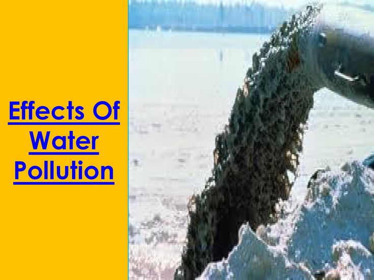 impacts of water pollution on humans Some of adverse effects of water pollution are as follows: water pollution adversely affects the health and life of man, animals and plants alike polluted water is also harmful for agriculture as it adversely affects the crops and the soil fertility pollution of sea water damages the oceanic life.
