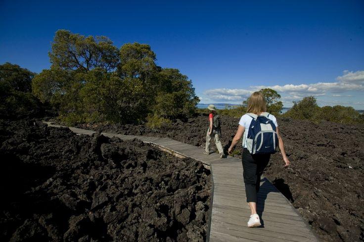 Rangitoto Summit Walk