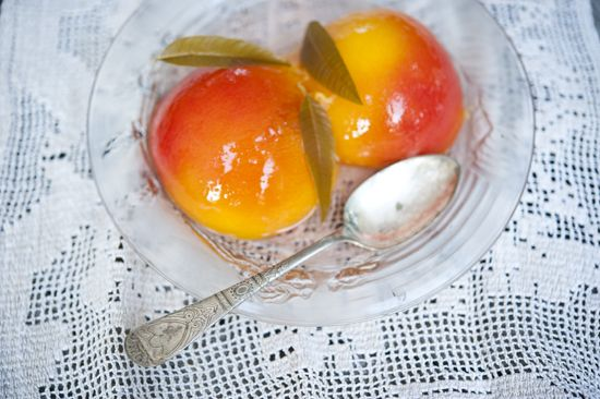 Lemon Verbena Recipes ideas on Pinterest | Lemon verbena plant, Lemon ...