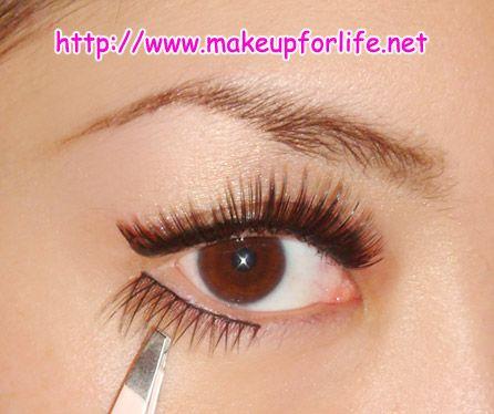 How To Apply False Eyelashes On The Bottom