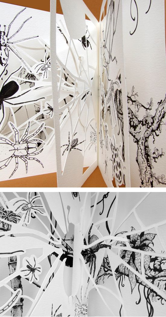 Evolution, food chains, illustration and hand cut paper sculpture  - copyright Ann Dadd