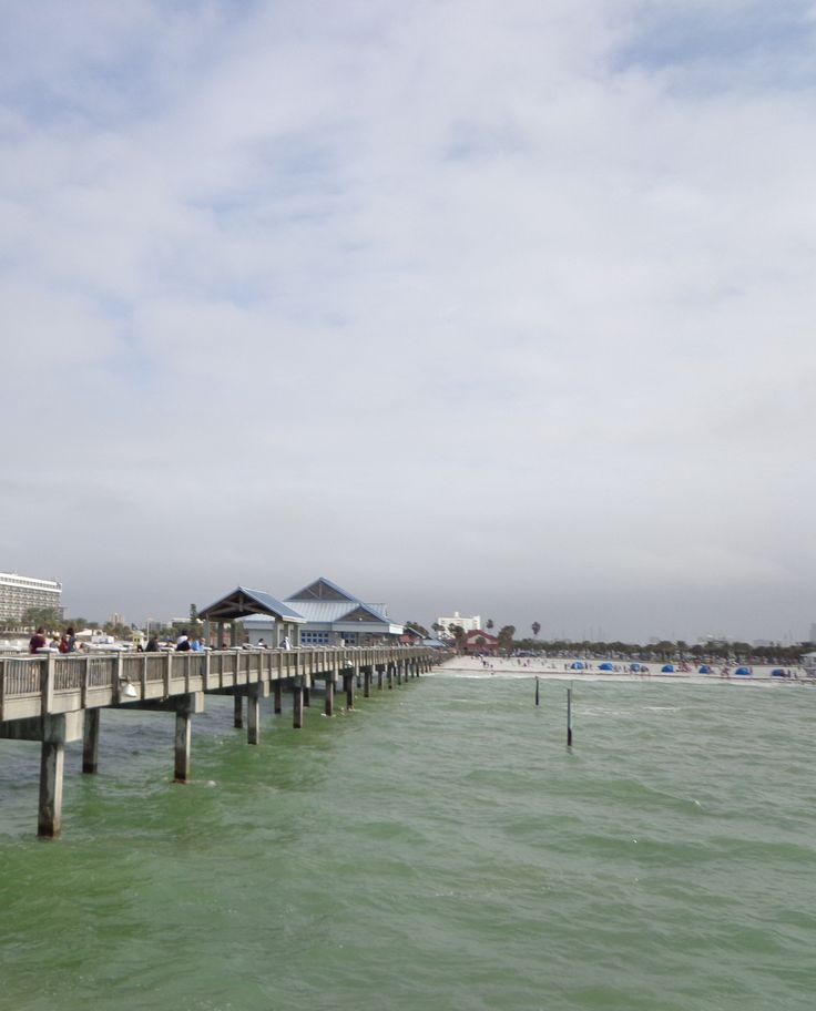 Best 25 clearwater beach pier 60 ideas on pinterest for Fishing clearwater fl