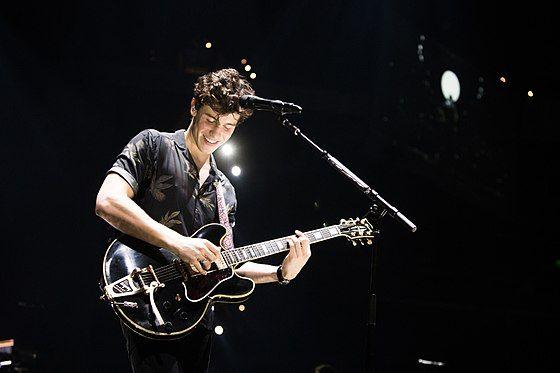 Shawn Mendes Live in Concert.jpg