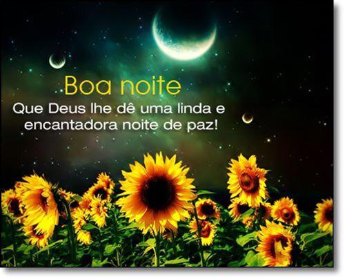 1141 Best Boa Noite ! E Lindas Noites ..!! Images On