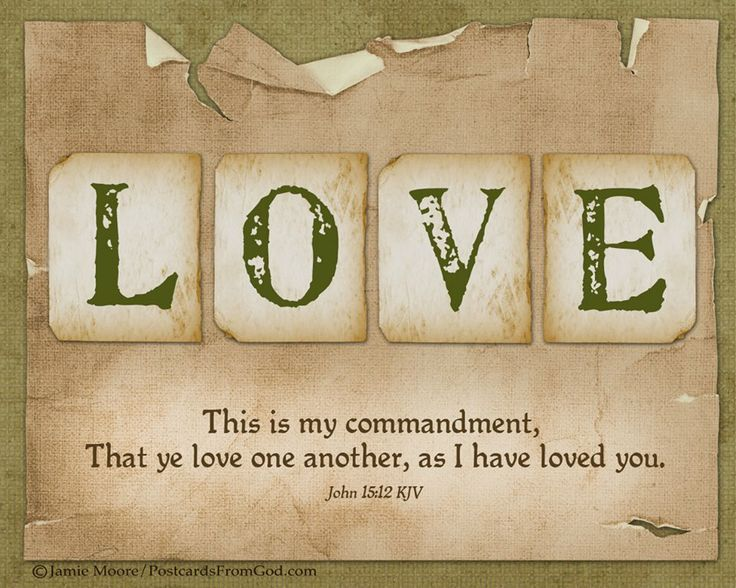 Love Each Other As I Have Loved You: 89 Best Images About Bible Verses On Pinterest