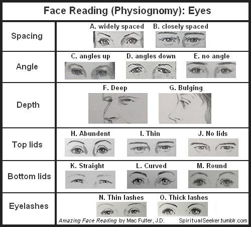 Face Reading (Physiognomy): Eyes Since eyes are the primary sensory organ for light, it is no surprise that eyes have been called the windows of the soul. Our eyes reflect our outlook, our attitudes, and our openness. Conversely, they tell when we...