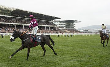 Don Cossack: Three magic memories from the star stayer  https://www.racingvalue.com/don-cossack-three-magic-memories-from-the-star-stayer/