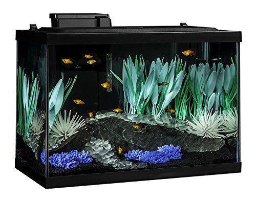 Tetra ColorFusion 20 Gallon Aquarium Kit Fish Tank Aqua Aquarium Gallon Glass #Tetra