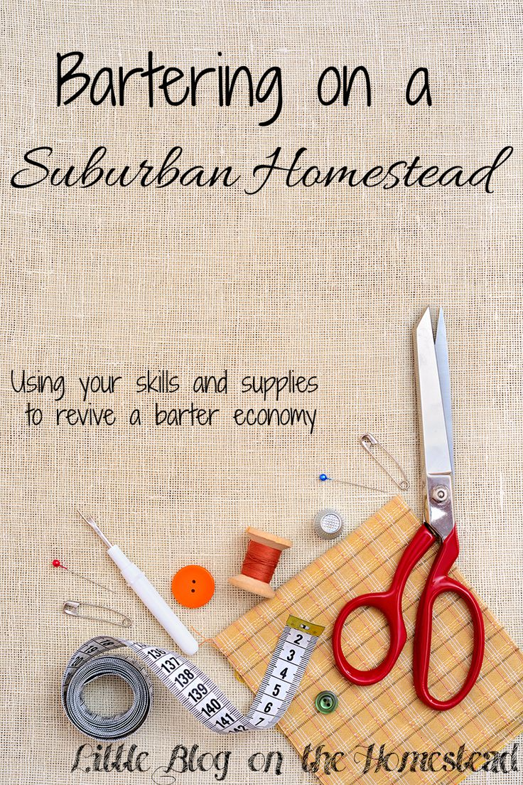 Bartering on a Suburban Homestead - http://www.littleblogonthehomestead.com/bartering-on-a-suburban-homestead/