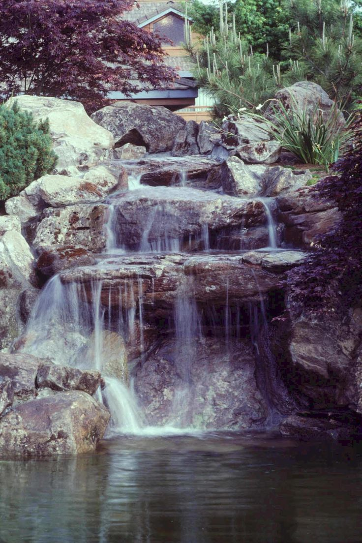 72 best images about fish ponds on pinterest backyard for Pictures of ponds with waterfalls