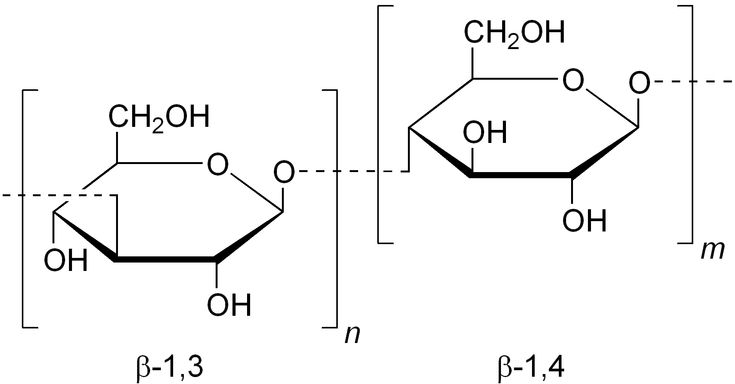 Beta-1,3-1,4-glucan