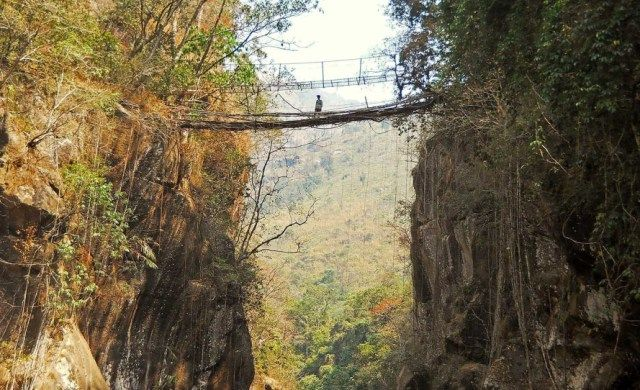 This Man Is Trying To Save India's Last Remaining Living Root Bridges - Explore like a Gipsy, Study like a Ninja
