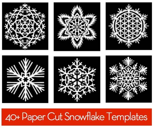 So fun!  I won't print out the templates, but it's still great for brainstorming ideas!  Free Download: 40+ Paper Snowflake Templates » Curbly | DIY Design Community #winterdecor