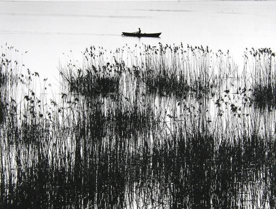 Toni Schneiders