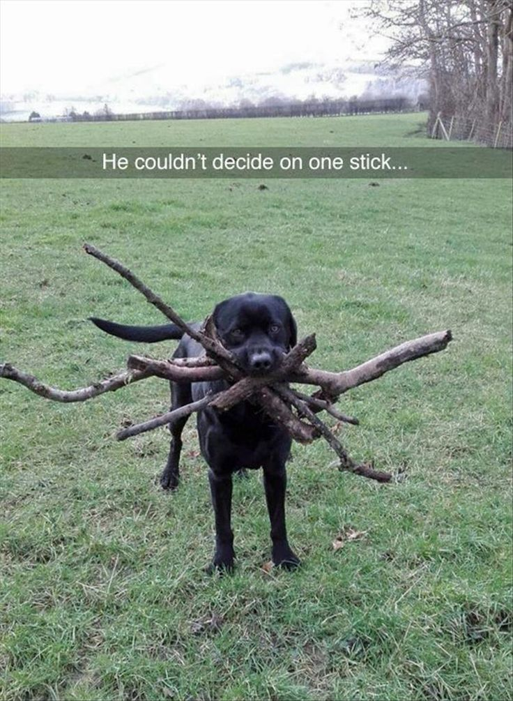 Funny Pictures Of The Day - 33 Pics
