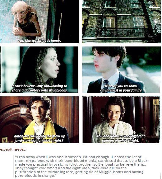 whos mudblood? potter is pure blood remus i think is half and peter is also a pureblood