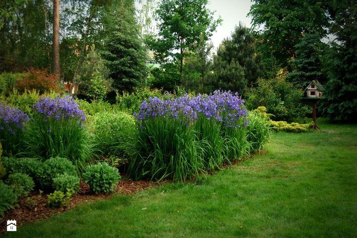 Ogród - zdjęcie od Ogrody Mielec - Ogród - Ogrody Mielec