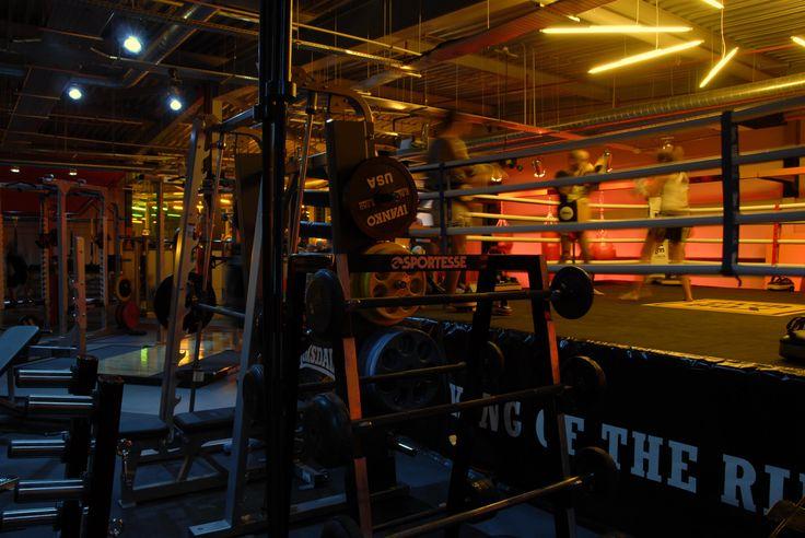 Light + Design - Gymbox Westfield