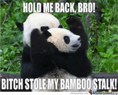 25 Most Funny Fight Meme Pictures And Photos That Will Make You Laugh