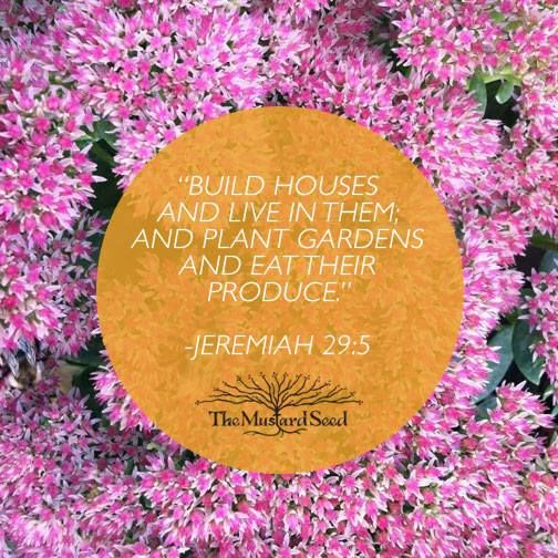 Build houses and live in them; and plant gardens and eat their produce. - Jeremiah 29:5