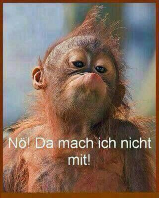 I´ve started a anti-monday-campagne ...... suche noch Mitstreiter...... -more funny pictures :D www.multismile.com