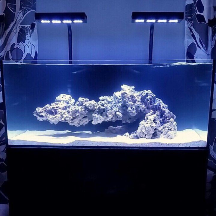 20 Best Marine Tank Rock Structure Ideas Images On
