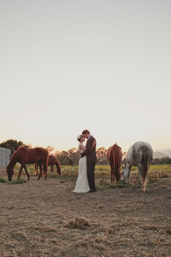 I might love horses & weddings together too much.  Photo by Glaser Jorgensen