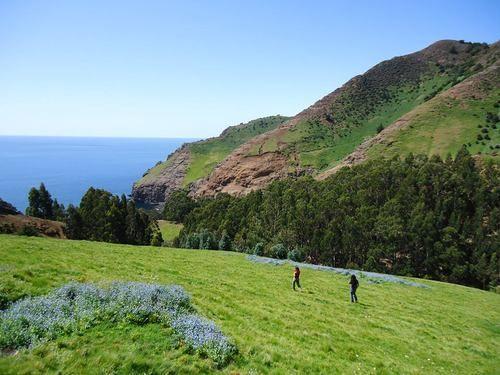 ¡Buen día! La aventura es ahora, visítanos en www.crusoeislandlodge.com  ¡Que tengan un excelente fin de semana largo!