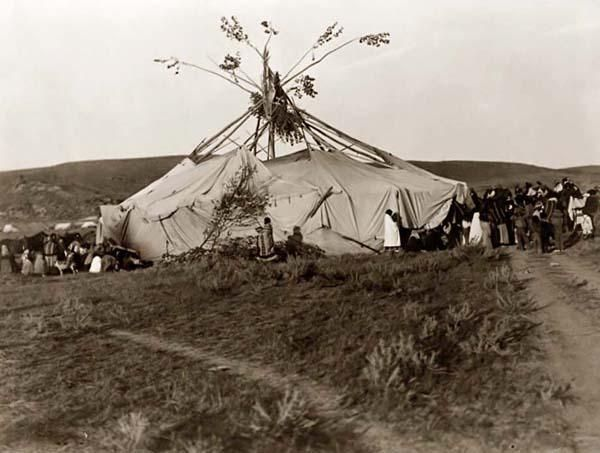 Here for your browsing pleasure is a grand photo of a Cheyenne Sun Dance. It was made in 1910 by Edward S. Curtis. The illustration documents this Cheyenne Ceremony.