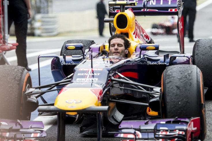 Mark Webber, Red Bull, Interlagos, 2013