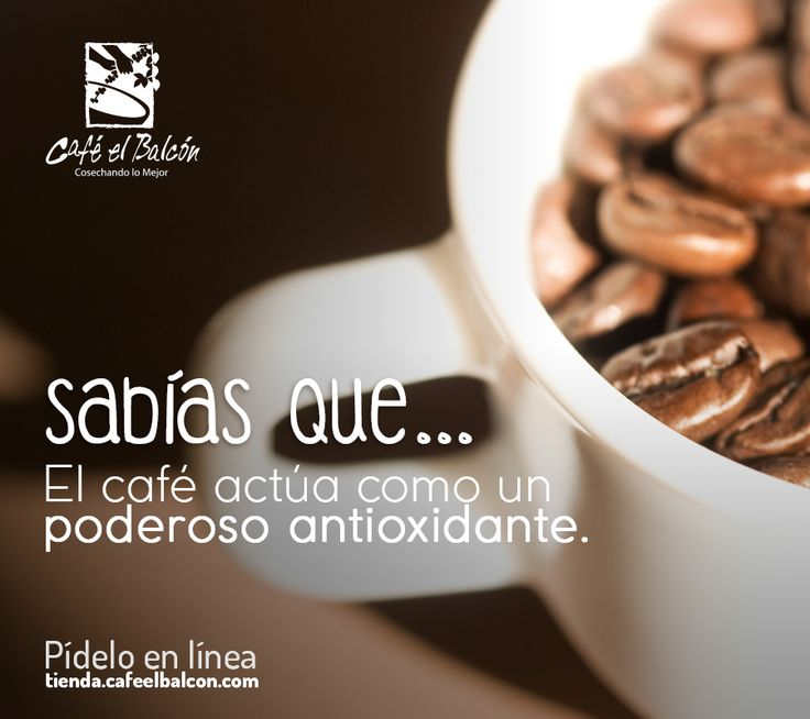 El café se ha situado sexto en la lista de alimentos y bebidas con más antioxidantes por detrás de las nueces, moras o alcachofas. De esta manera, el café nos puede ayudar a retrasar el envejecimiento de las células. Algo que se asocia a disfrutar de una mejor salud. Pídelo en línea tienda.cafeelbalcon.com #mejorunbuencafe #cafeelbalcon #cafecolombiano #antioquia