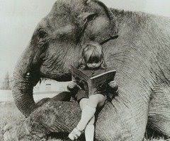 .Little Girls, Girls Reading, Friends, Elephant, Reading Spot, Book, Reading Chairs, Reading Nooks, Stories Time