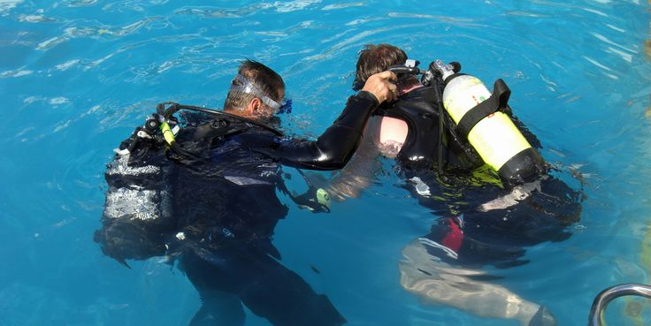 The Value Of PADI's Discover Scuba Diving Course