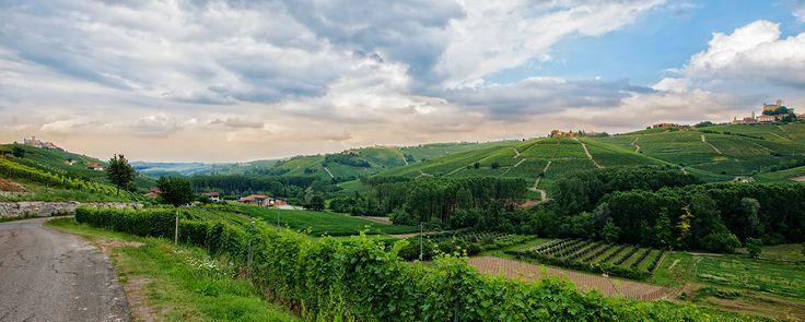 Josetta Saffirio landscape