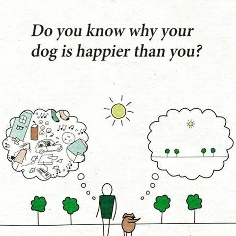 Mindful or MindFULL?