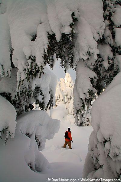 Snowshoeing in Turnagain Pass, Chugach National Forest, Alaska
