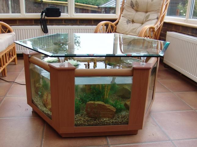 Best 25 Table Aquarium Ideas On Pinterest Terrariums Dragon Barbu Habitat Gecko L Opard And Habitat Pogona