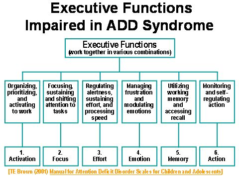 Executive functioning impairment  Repinned by SOS Inc. Resources http://pinterest.com/sostherapy.