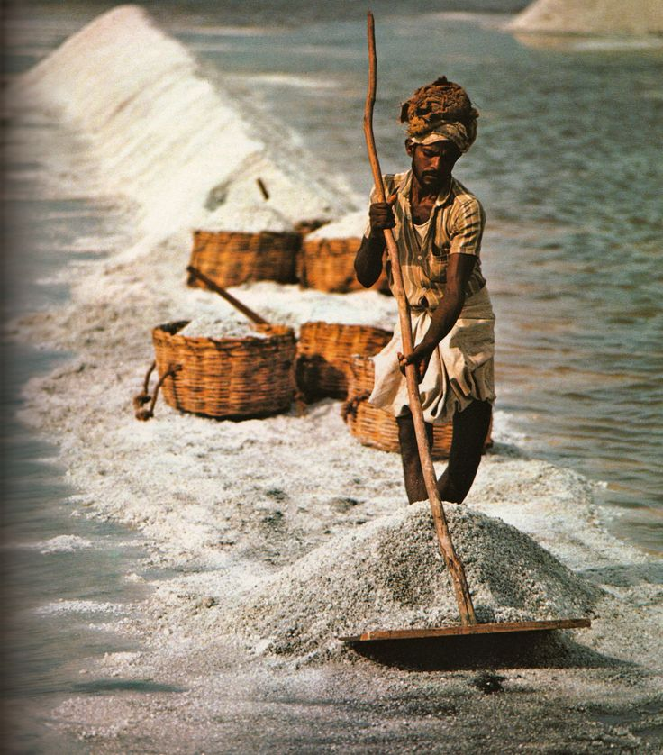 .Salt worker, India